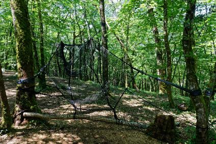 Forêt adrénaline: une ascension au cœur la nature bretonne